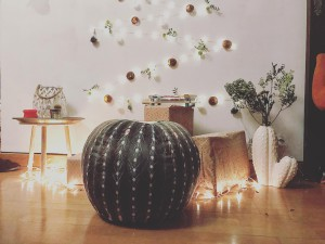 vs chrismas cactus deco interiordesign